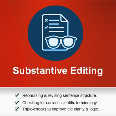 substantive editing service